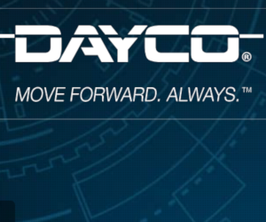 Dayco SI0065RO - noua curea de distribuție 941162